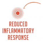 Super-Whey-Product-Feature-Inflammatory-Response-Icon