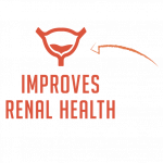 Super-Whey-Product-Feature-Renal-Health-Icon